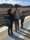 Jumping a train to Sydney with some little friends along for the ride